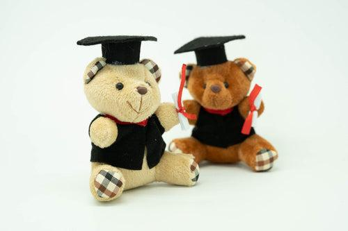 Graduation Bear Soft Toy Gift Ideas and Novelties One Dollar Only