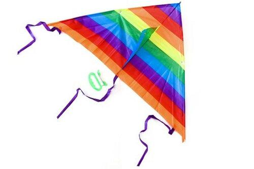Colourful Triangular Kite (Small) GAMES AND TOYS One Dollar Only